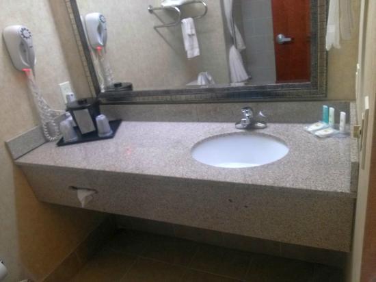 Comfort Inn Huntsville: bath