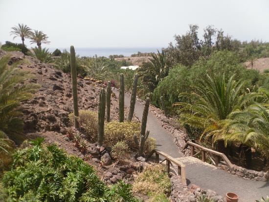 panorama - Picture of Oasis Park Fuerteventura, Fuerteventura - TripAdvisor