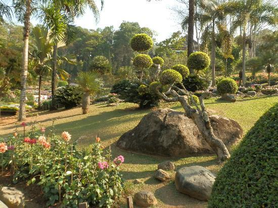 Mae Fa Luang, Thailand: Rock Garden diplay