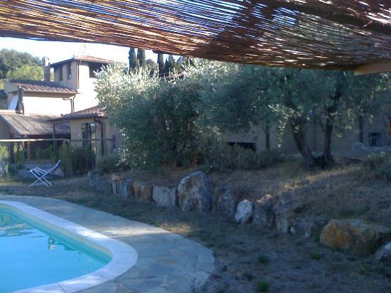 Agriturismo Il Castagnolino: Abords de la picsine