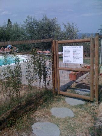 Agriturismo Il Castagnolino: Entrée de la piscine