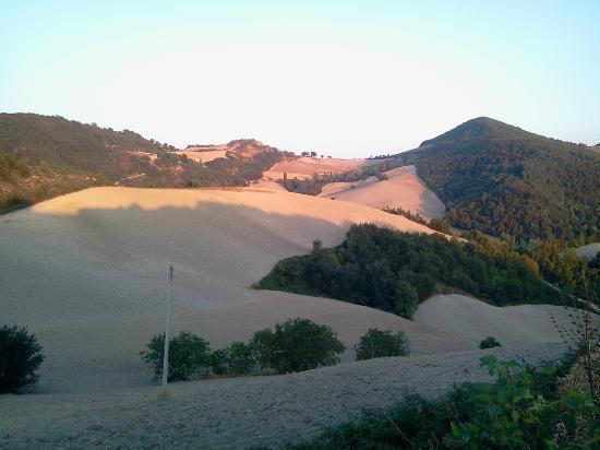 Ca' Maddalena : panorama dall'agriturismo 3