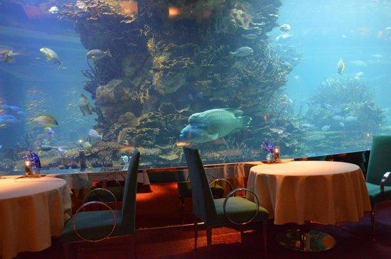 Culinary Flight: My favourite fish at Al Mahara