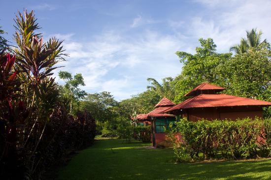 Veragua River House: Bungalows