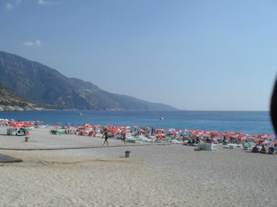 Magic Tulip Beach Hotel: Beach 100 m from bar area
