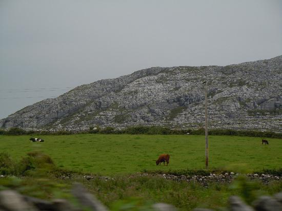 Burren Yoga Retreats: View of Burren Mountain: Hiking Day Outing