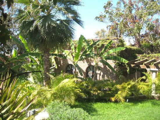 ذا تودوز سانتوس إن: Central garden area 