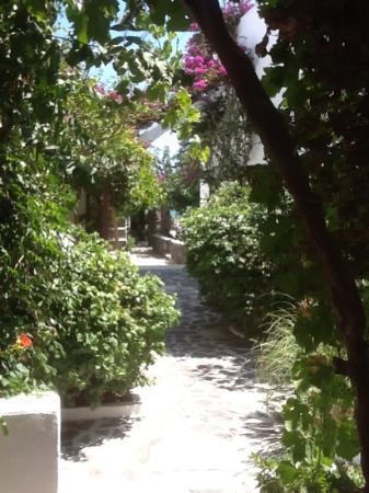 Santorini Reflexions Sea: ingresso