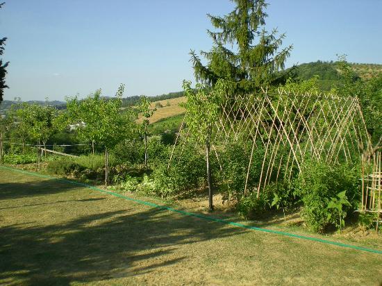 Garden House: Orto