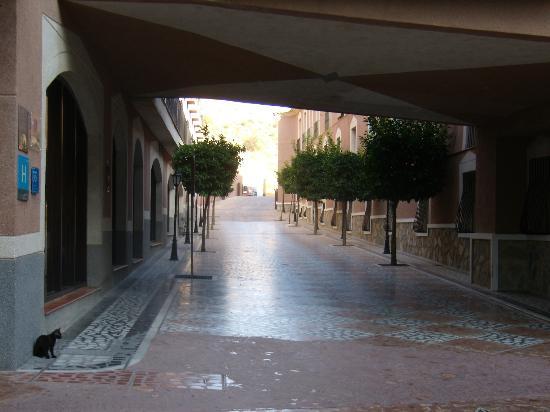 Hotel Leon: Omgivelser omkring hotellet