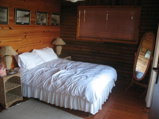 Big Tree House Lodge: The master bedroom