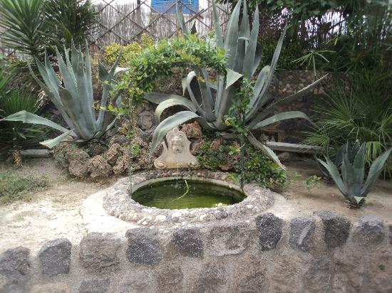 Hotel Antares: Fontana