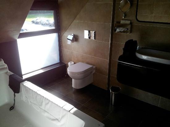 Le Pavillon de Gouffern : salle de bain peu pratique