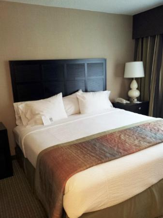 Embassy Suites by Hilton Raleigh - Crabtree: king bed
