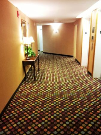 Comfort Inn & Suites Crabtree Valley : hallway on our floor
