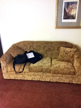 Comfort Inn & Suites Crabtree Valley: sofa