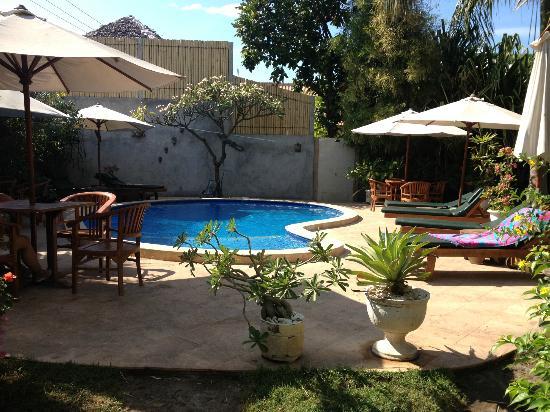 Rumah Saga: Pool/Garden area