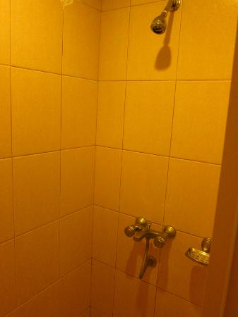Wild Orchid Beach Resort Subic Bay: No water in the shower