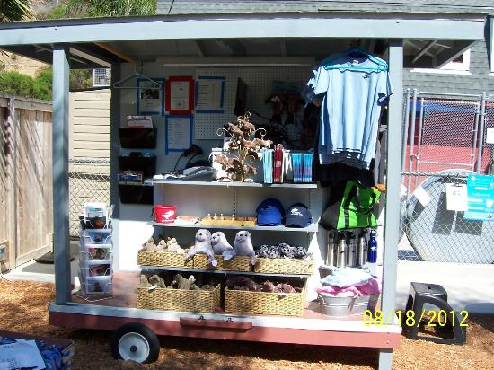 Pacific Marine Mammal Center: Gift Shop Kiosk