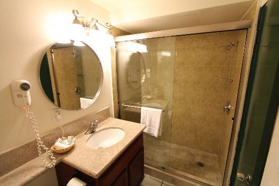 Park Plaza Lodge Hotel: Salle de bain de taille moyenne mais parfaitement propre et soignée