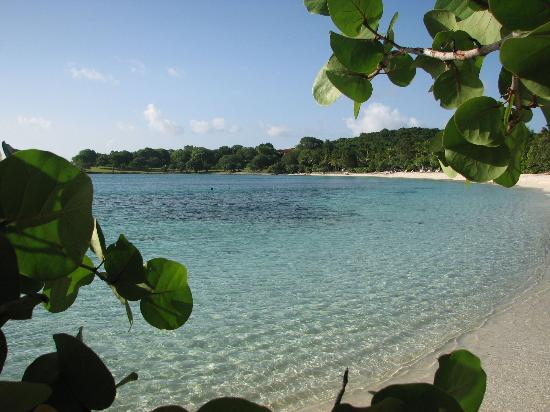 Scott Bay Beach Caneel Bay  All You Need To Know Before You Go With Photos Tripadvisor