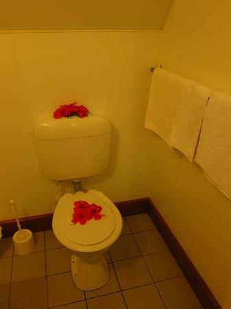 Paradise Cove Lodges: Toilet