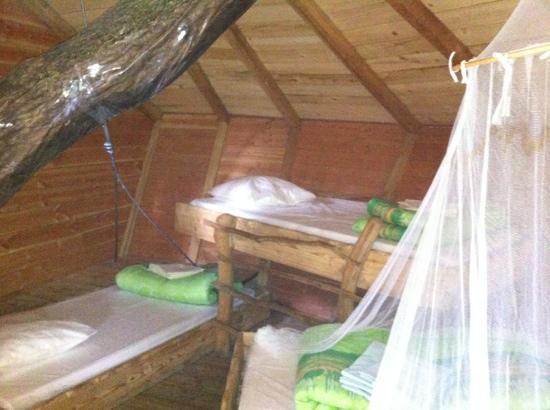 Les Alicourts Resort: intérieur d'une cabane pour 4