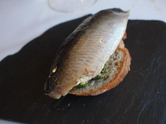 Acio: sardina ??
