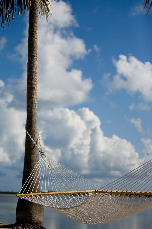 Rock Reef Resort : Pier Hammock