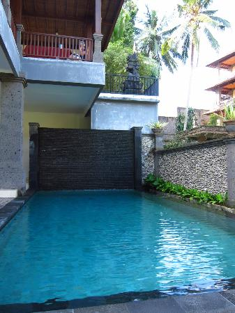 Indira Cottage: Pool - a bit cold