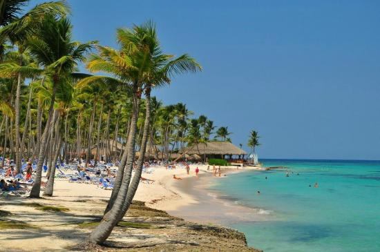 General view of southern beach picture of club med punta - Club med punta cana chambre club famille ...