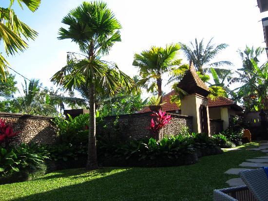 Indira Cottage: Garden