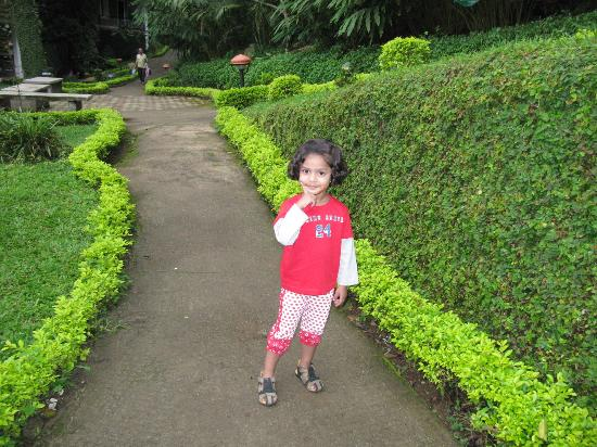The Tall Trees Munnar: My kid enjoyed the total area