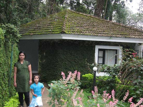 The Tall Trees Munnar: The cottage I was provided