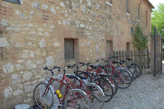 Agriturismo San Fabiano: Community use bikes