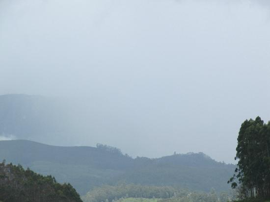 The Tall Trees Munnar: Picturesque of the surrounding on the way to resort