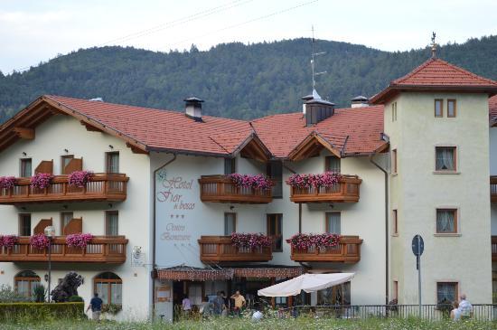 Hotel Fior Di Bosco: Hotel