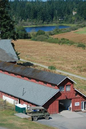 Canopy Tours Northwest : View of the barn/office from the last platform