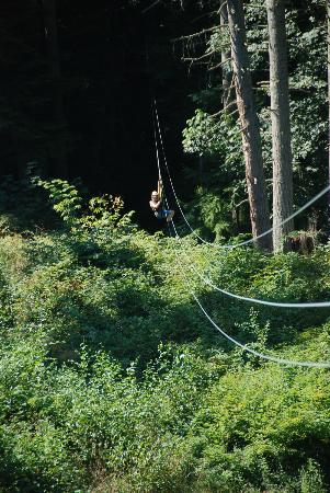 Canopy Tours Northwest : 660 foot run - awesome views!