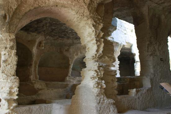 Abbey of Saint-Roman (L'abbaye de Saint-Roman)