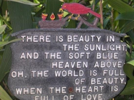 Hotel Atitlan: love