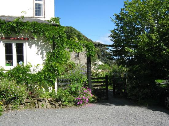 Edgcott House : Tuin