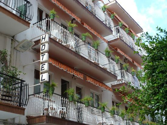 Hotel El Cid: El Cid