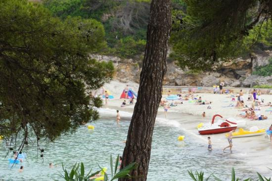 IBEROSTAR Pinos Park: Hotel