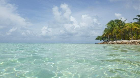 Pelican Beach - South Water Caye: Unreal view!