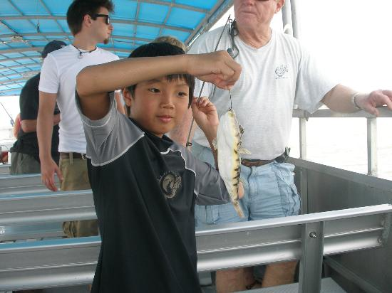 Capt. Dicks - Saltwater Marsh Adventure: One of my kids holding up a puffer fish he caught on this trip