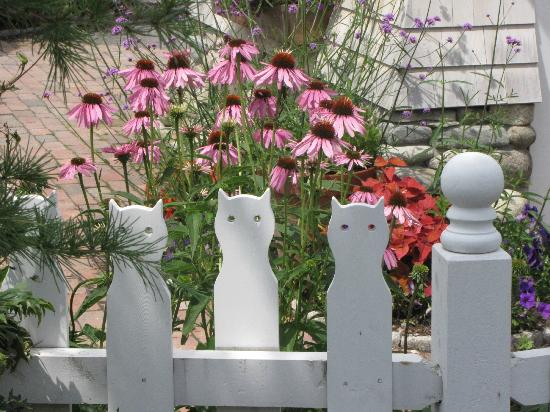Coastal Maine Botanical Gardens: The Cutest Picket Fence Ever!
