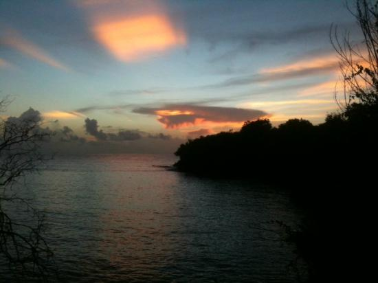 Angel Fish Cove : Sunset at AFP