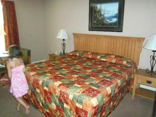 Twin Mountain Inn & Suites: Bed area 2