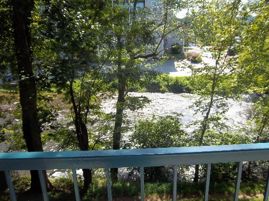 Twin Mountain Inn & Suites: View from balcony